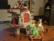 Playmobil Berk Dragons