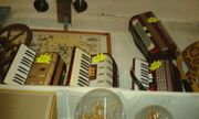 Zieharmonika 5 Stück