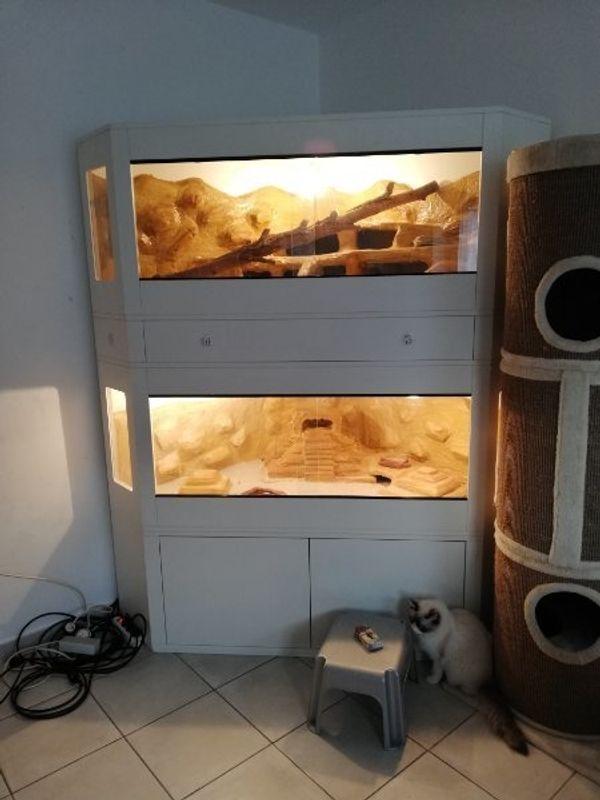 Terrarium Sonderanfertigung mit Lampen