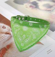 Halsband für Katze kleine Hunde