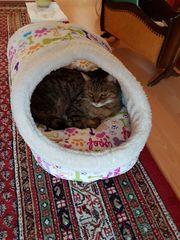 Katzenhöhle aus Stoff 15 Euro