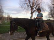 Kindergeburtstag auf dem Pferdehof