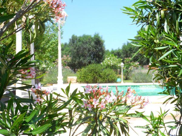Ferienhaus Apulien Italien Schone Privatsphare Mit Pool Und