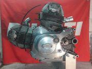 DUCATI Pantah 500 Motor