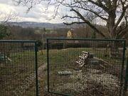 Großes Gartengrundstück in Ditzingen zu