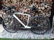 Rennrad Specialized Carbon