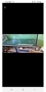 XXL Aquarium