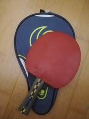 Tischtennisschläger Hülle für Tischtennistraining geeignet