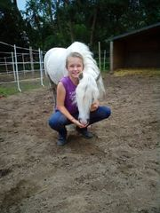 Pony putzen und satteln und