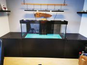 Aquarium 160 70 60 Technik