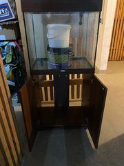 Aquarium Eiweisabschäumer und LED