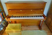 Klavier Euterpe by Bechstein
