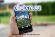 Top-Level eu Domain - cholera eu -
