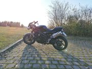 Triumph Speed Triple 1050 mit