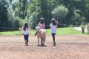 Pony Kinder Geburtstag