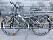 Fahrrad Pegasus Avanti 26 H44