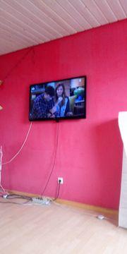 TV Philipps