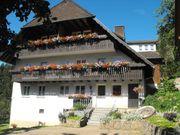 Ferienwohnung auf dem Schwarzwaldhof ruhige