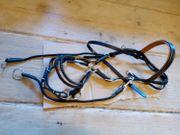 Sidepull oder Bitless Bridle Leder