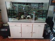Aquarium 120x50cmx60cm mit Unterschrank