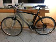 Tolles Herren Trekking Bike Alex