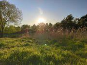 Freizeitgrundstück Garten gesucht in Darmstadt