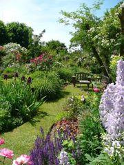 Mache gerne Ihre Gartenarbeit