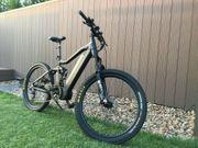 Markenlos E-Mountain Bike Universell 1000