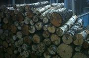 Kaminholz Brennholz Feuerholz Birke auf