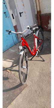 Damen Fahrrad 28zol 7gang Rücktrittbremse
