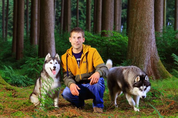 Hundepension und Hundeschule