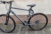 Fahrrad Cinos110 Größe 60
