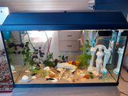 Aquarium 63 Liter mit Unterschrank