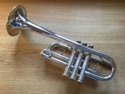 Yamaha EbD EsD Trompete YTR