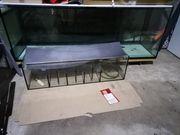 Aquarium 1000l