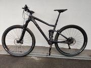 Mountain Bike Cube Stereo Carbon