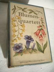 Blumenquartett Kartenspiel v Rita Leichsenring