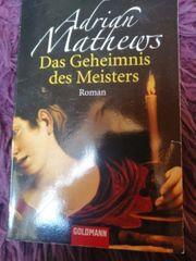 Roman Das Geheimnis des Meisters