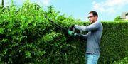 Erledige sämtliche Garten arbeiten