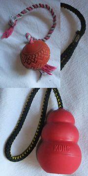 Apportier Spielball mit Wurfseil Kong
