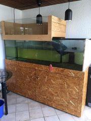 gebrauchtes Glas-Aquarium