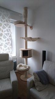 Katzenkratzbaum Deckenspanner