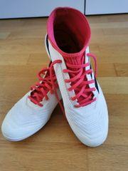 Hallen Turnschuh Adidas Größe 40