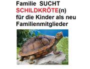 GESUCH Familie sucht 1-2 Schildkröten