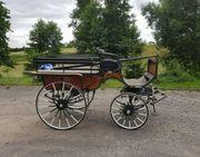 Wagonette Kutsche für Großpferde