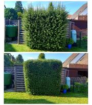 Garten und Landschaftsbau Pflasterarbeiten Gartenpflege