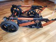 Kinderwagen Hartan Racer GTS mit