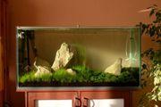200L Aquarium mit Led Beleuchtung