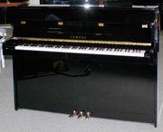 Klavier Yamaha P 114 M