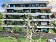 5- Zimmer Dachterrassen-Wohnung 65m2 Terrasse
